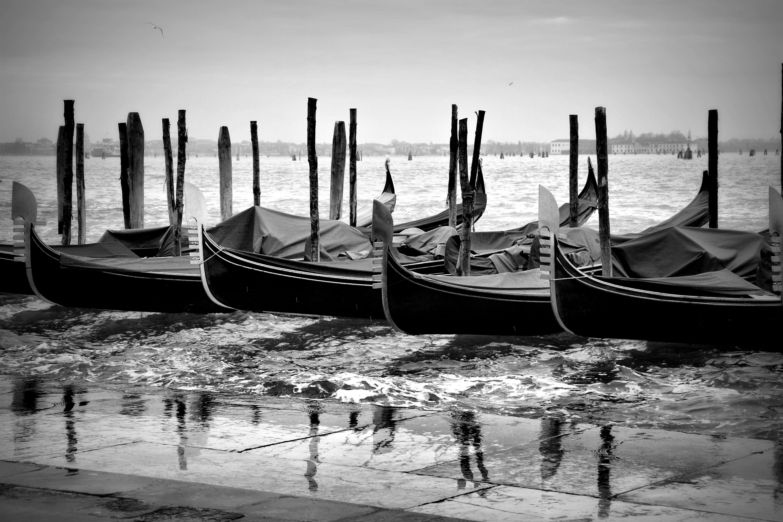 Description Venice in ...
