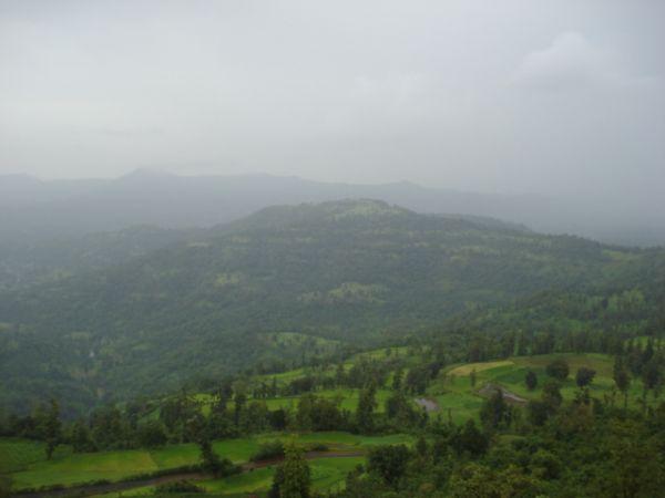Wilson Hills, Gujarat
