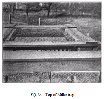 19th century knowledge traps and snares miller sparrow trap 1.PNG
