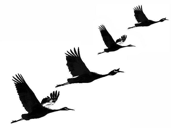 рисунок летящих журавлей картинки неофициального командного зачета