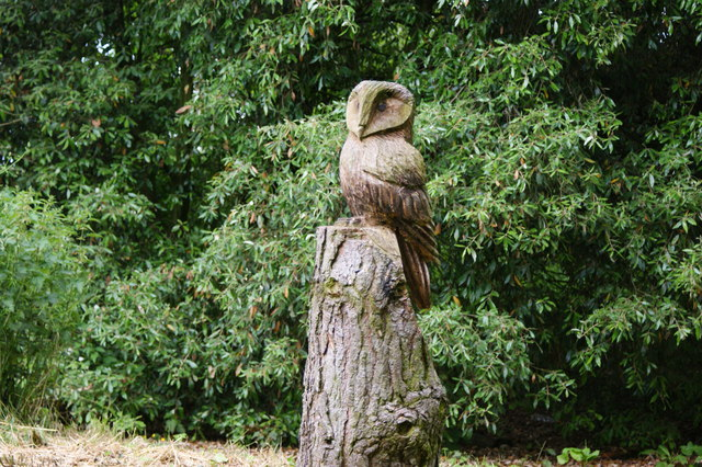 A carved owl at Jodrell Bank - geograph.org.uk - 1360257