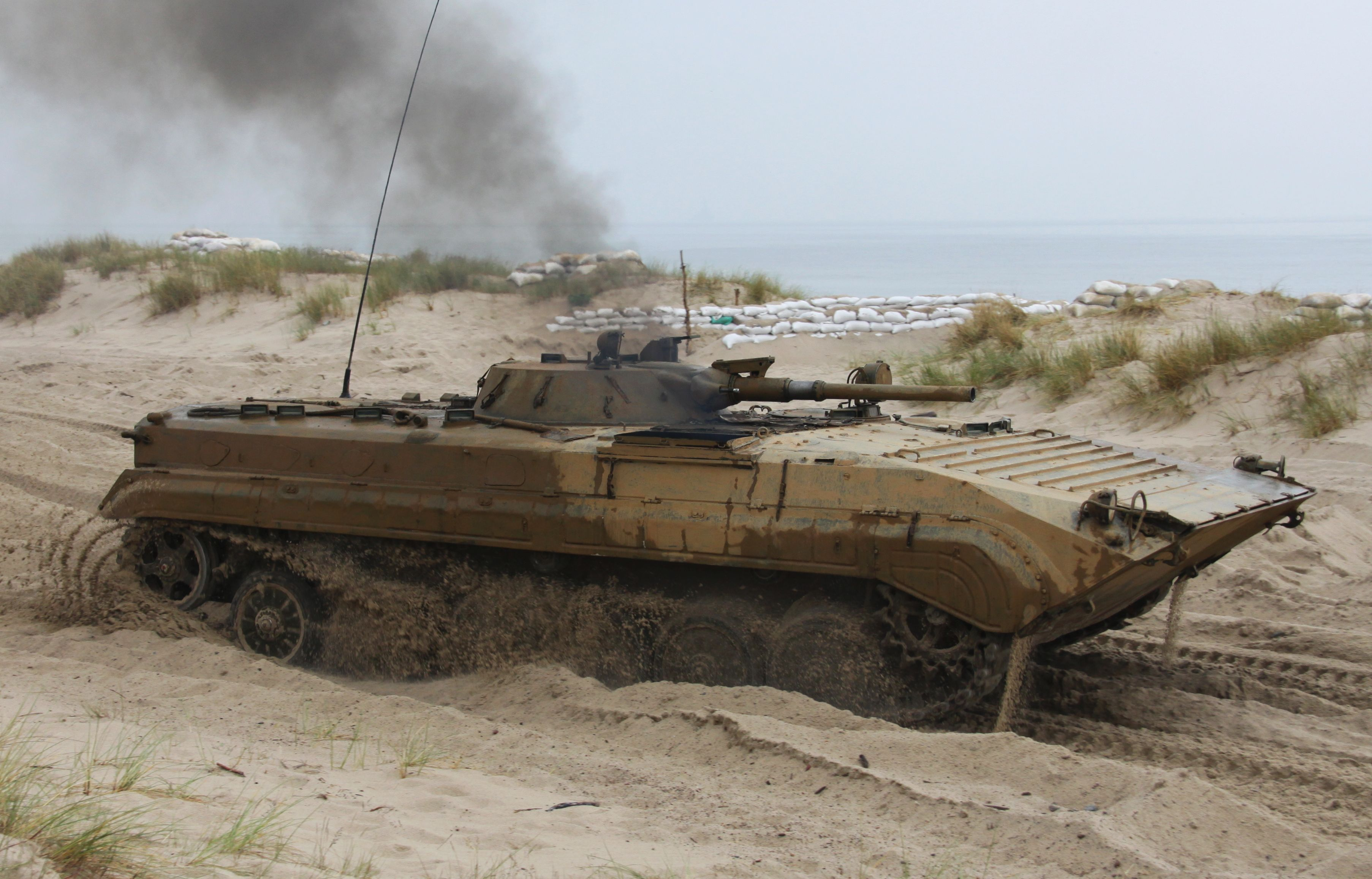 Depiction of BMP-1