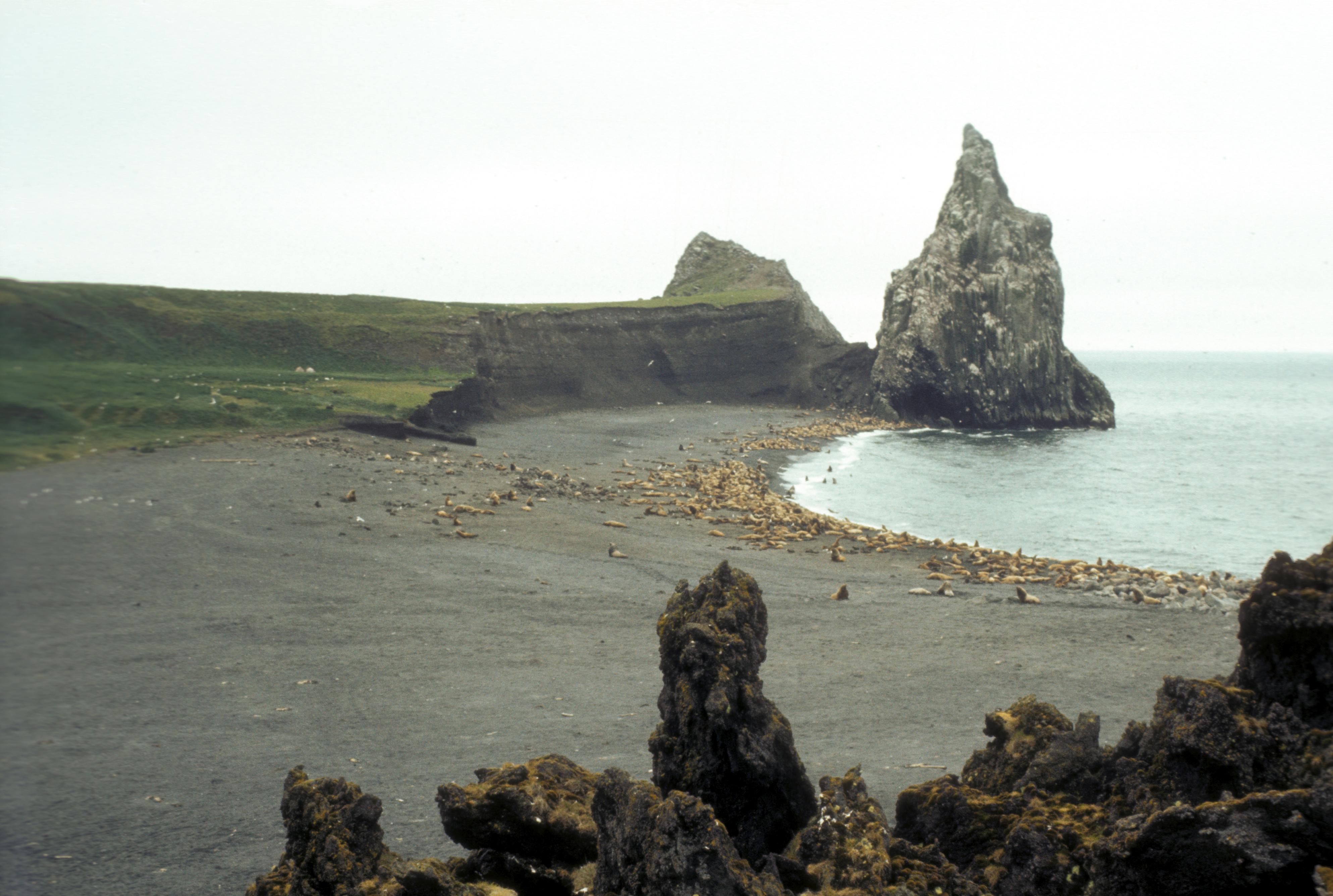 Alaska S Bogoslof Island