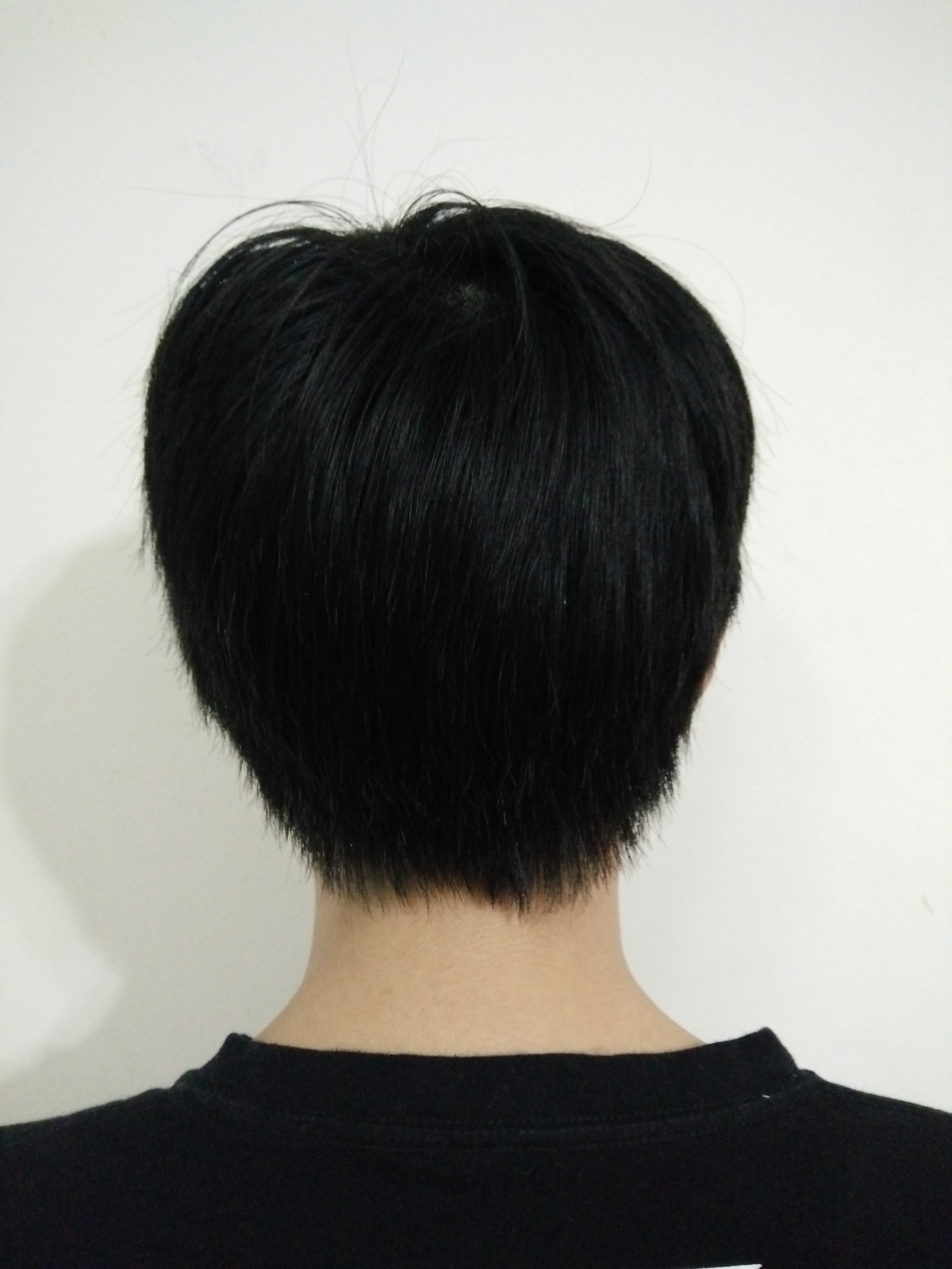 Fileboy With Short Black Hair Rear Viewg Wikimedia Commons