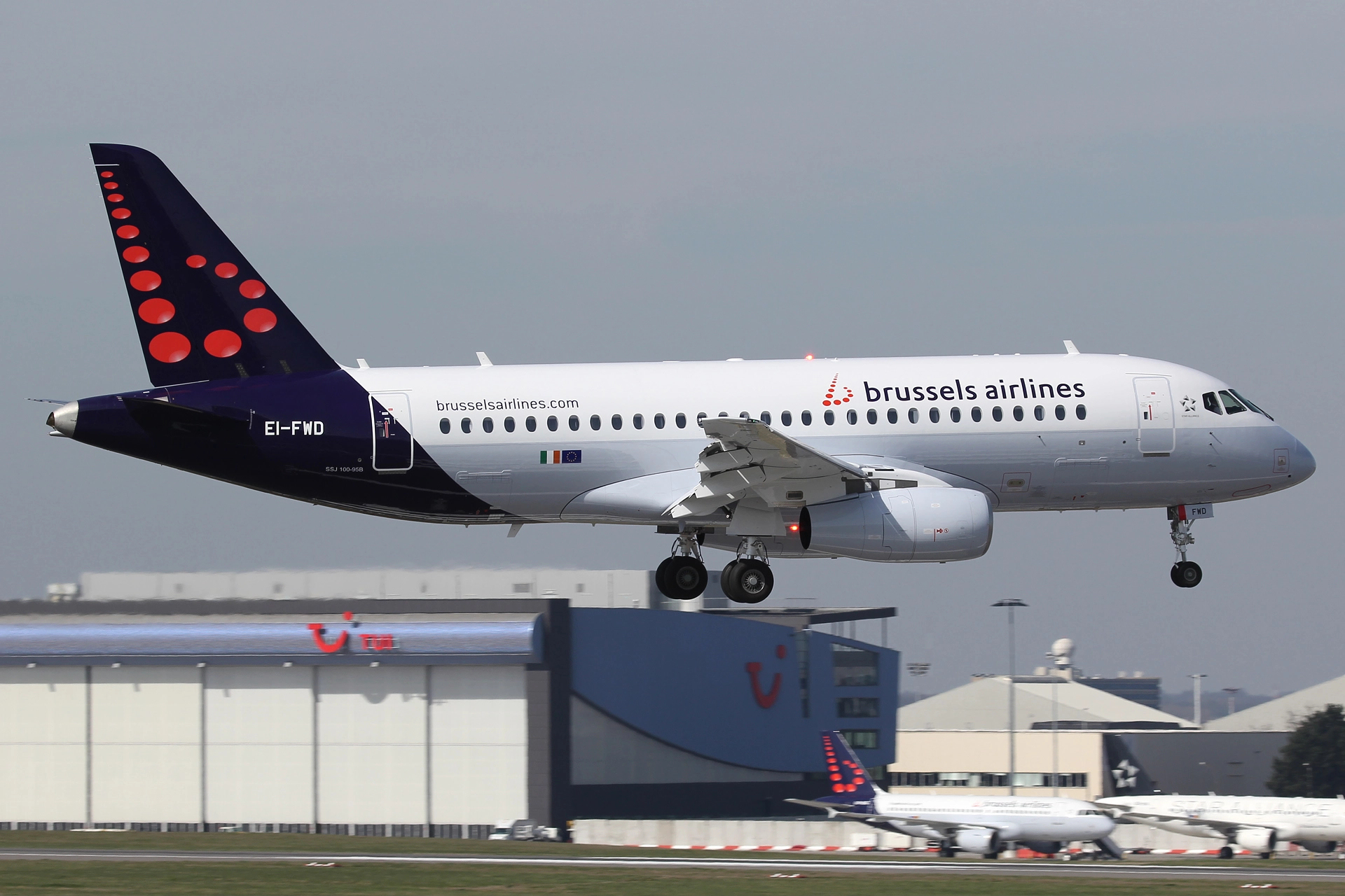 Bmi Chart: Brussels Airlines - Wikipedia,Chart
