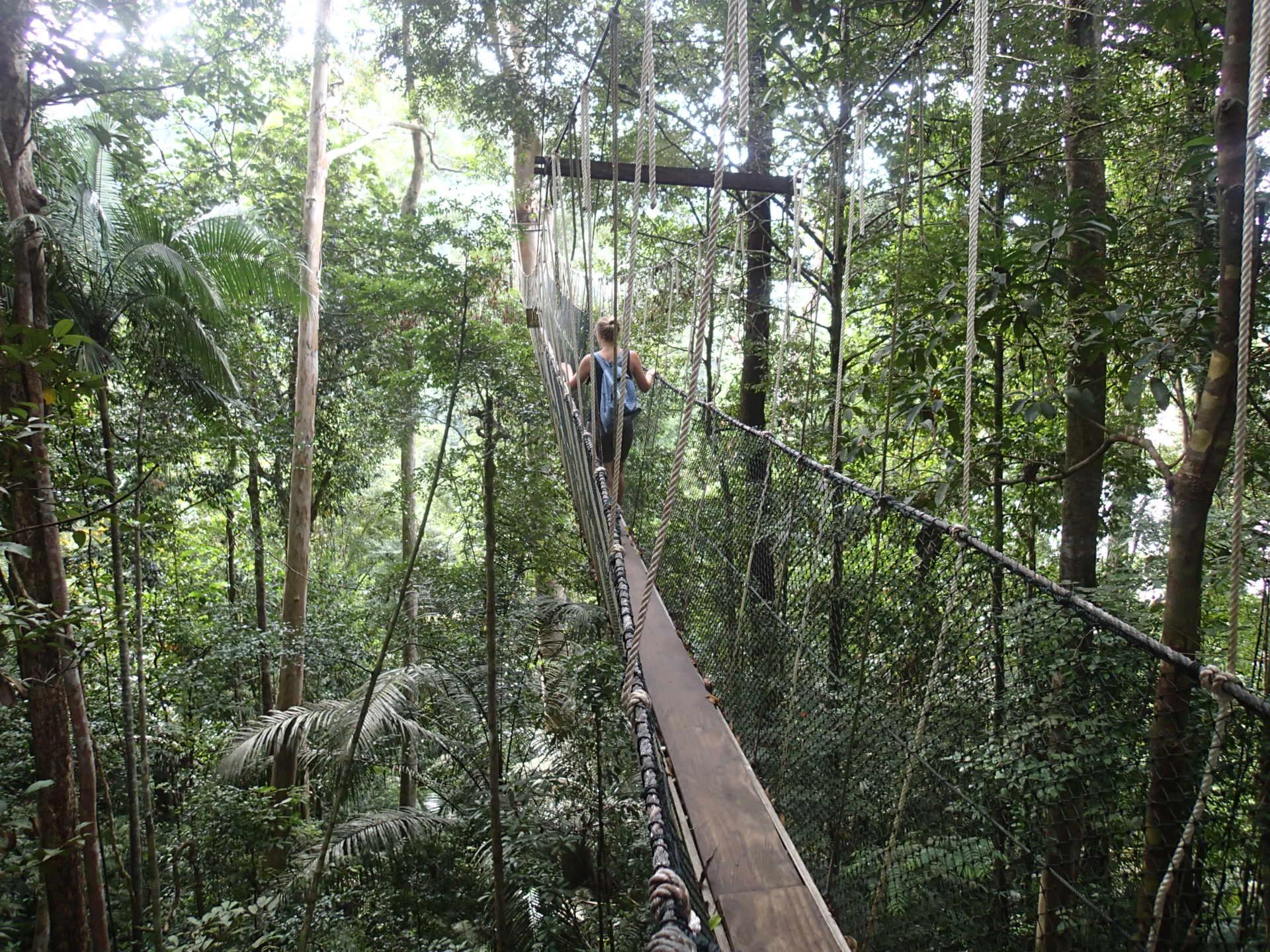 منتزه تامان نيجارا، أحد المزارات السياحية في مدينة كوالالمبور، ماليزيا