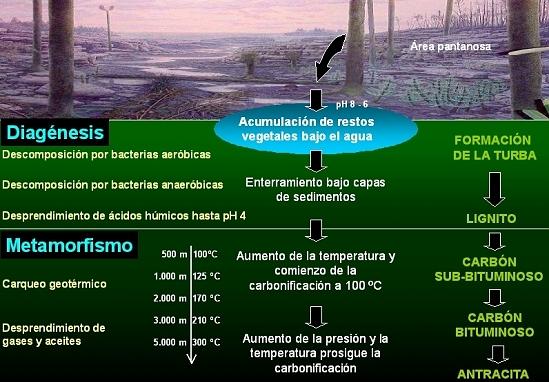 Proceso geológico de carbonificación. Autor: J. Angel Menéndez.