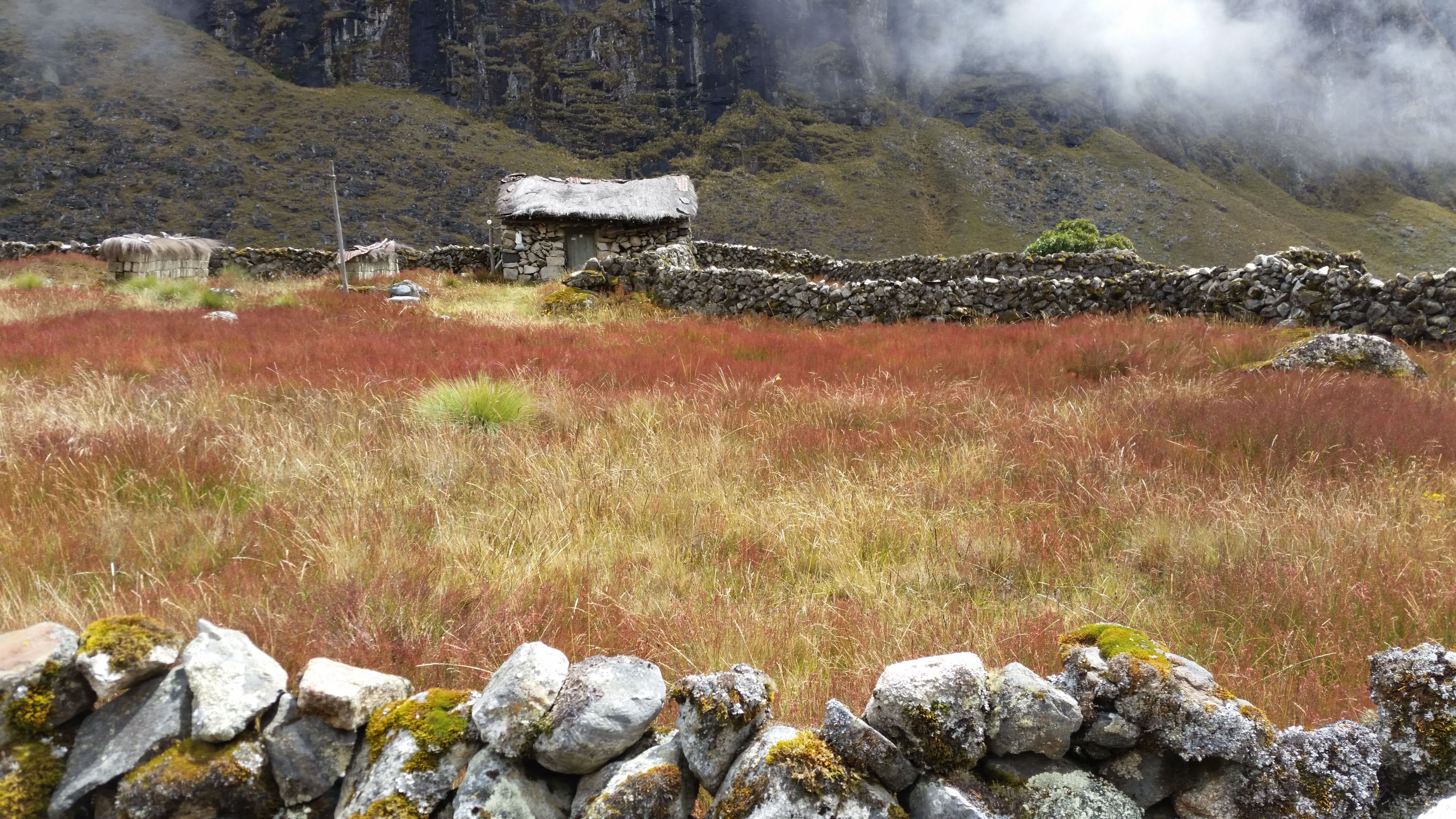 File Casa En Medio Del Camino El Choro Jpg Wikimedia Commons