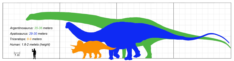 File:Dinosaurus-size-Wiki-Argentinosaurus-Apatosaurus ...