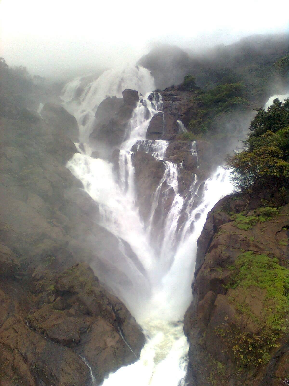 गोवा - विकिपीडिया