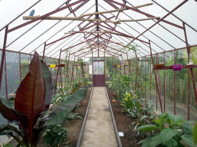 File Exotic Plants And Birds In The Secret Garden Eden