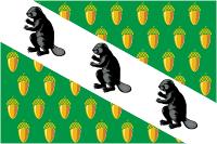 flaga Wierchnieje Dubrowa