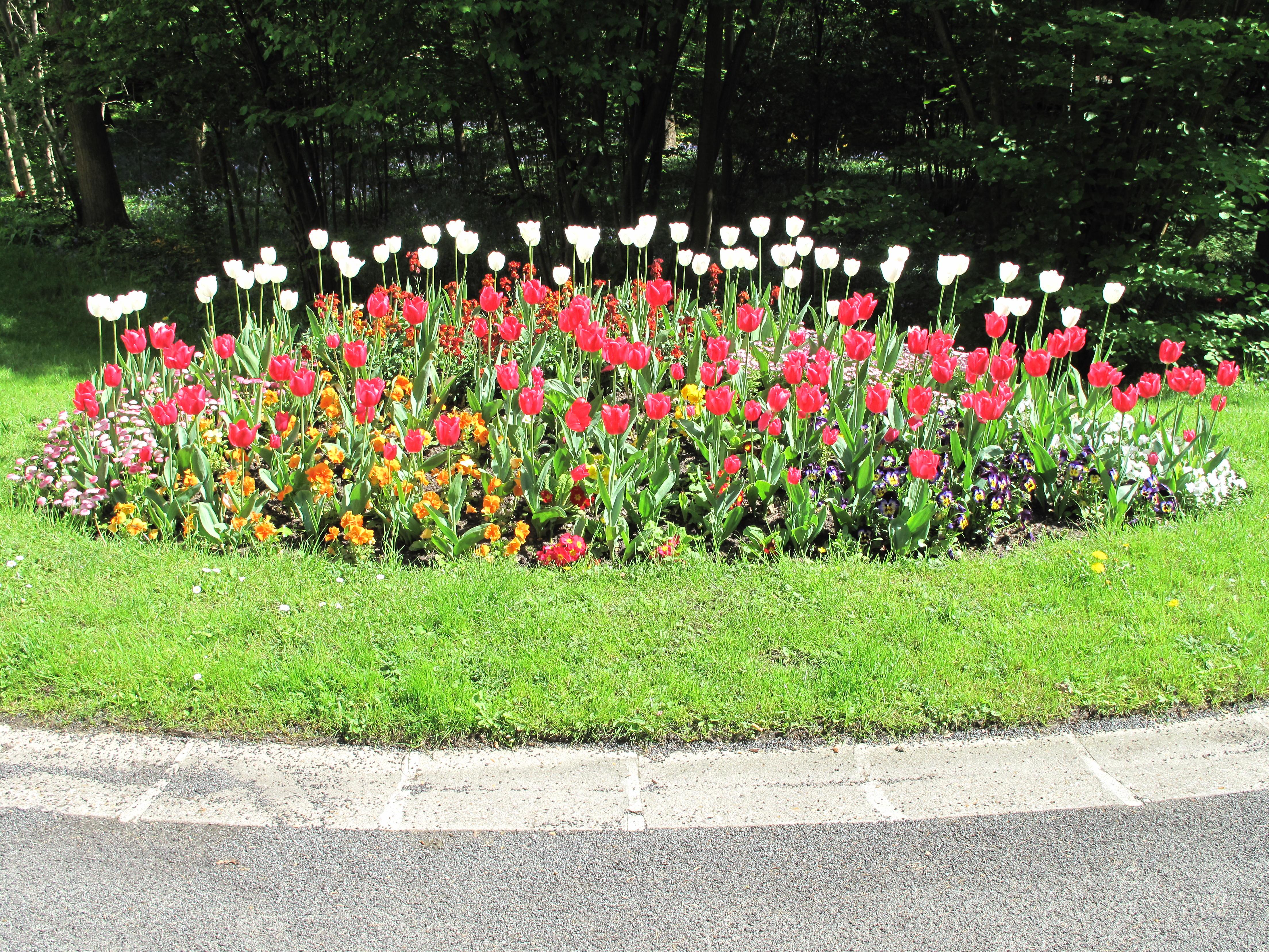File Flower bed Vaires D1305