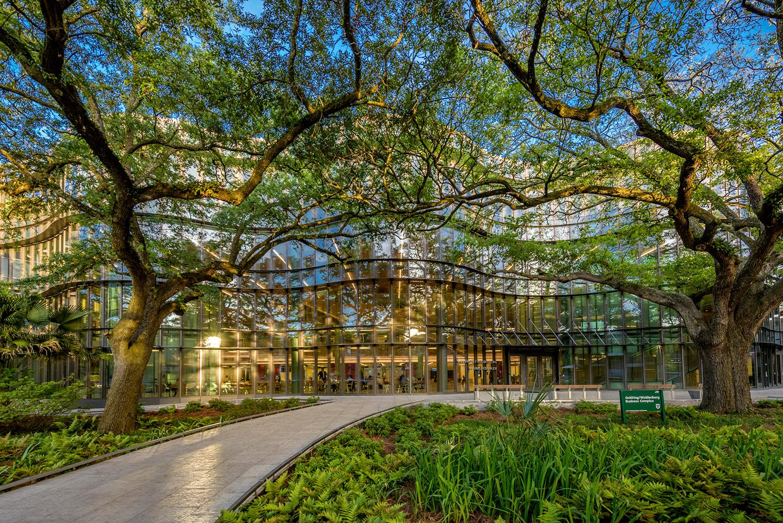 Freeman School of Business - Wikipedia