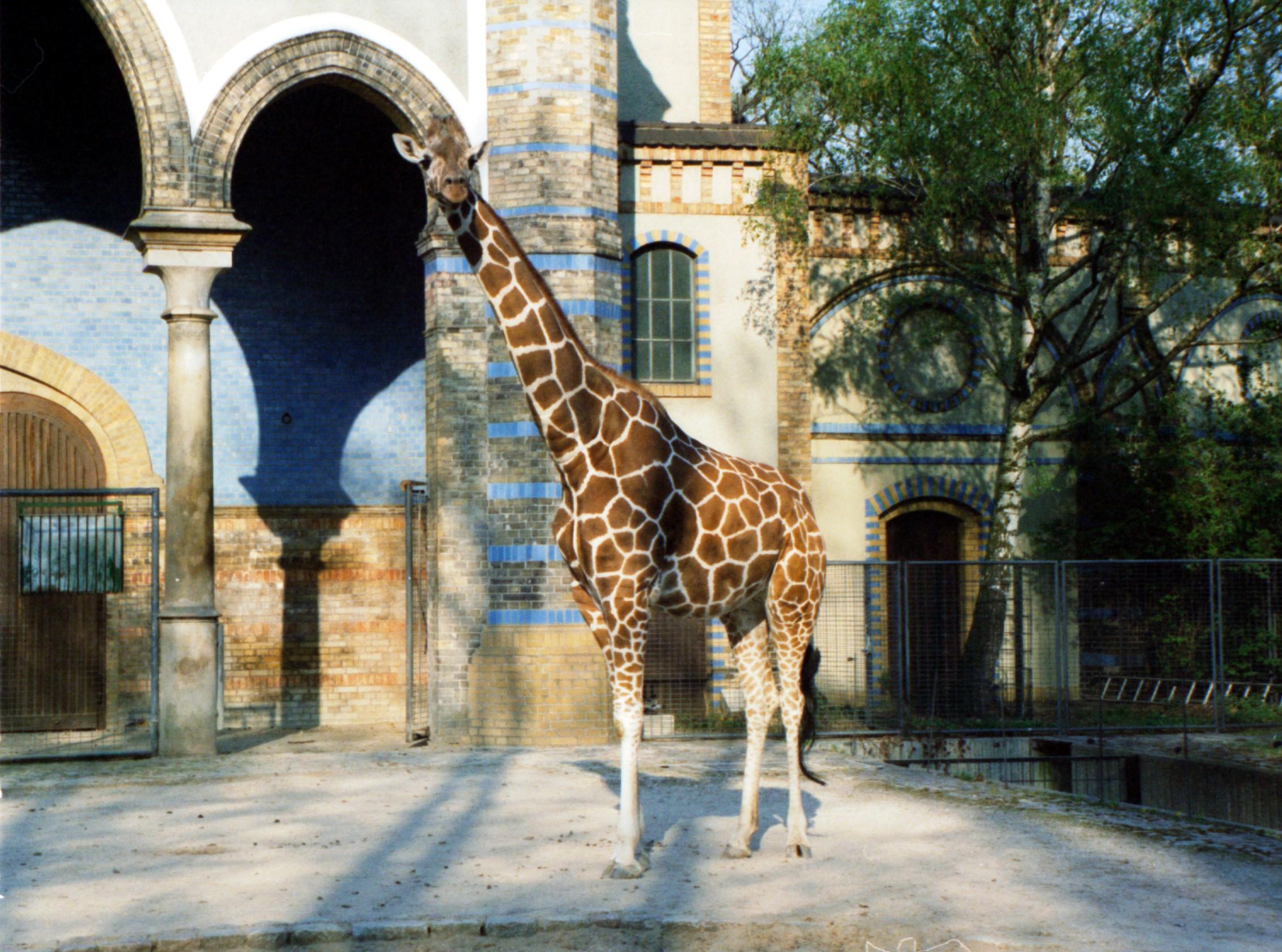 Der Zoologische Garten gilt als artenreichster Zoo der Welt