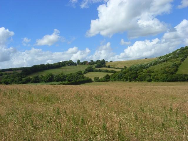 File:Hillside below Bledlow Ridge - geograph.org.uk - 883926.jpg