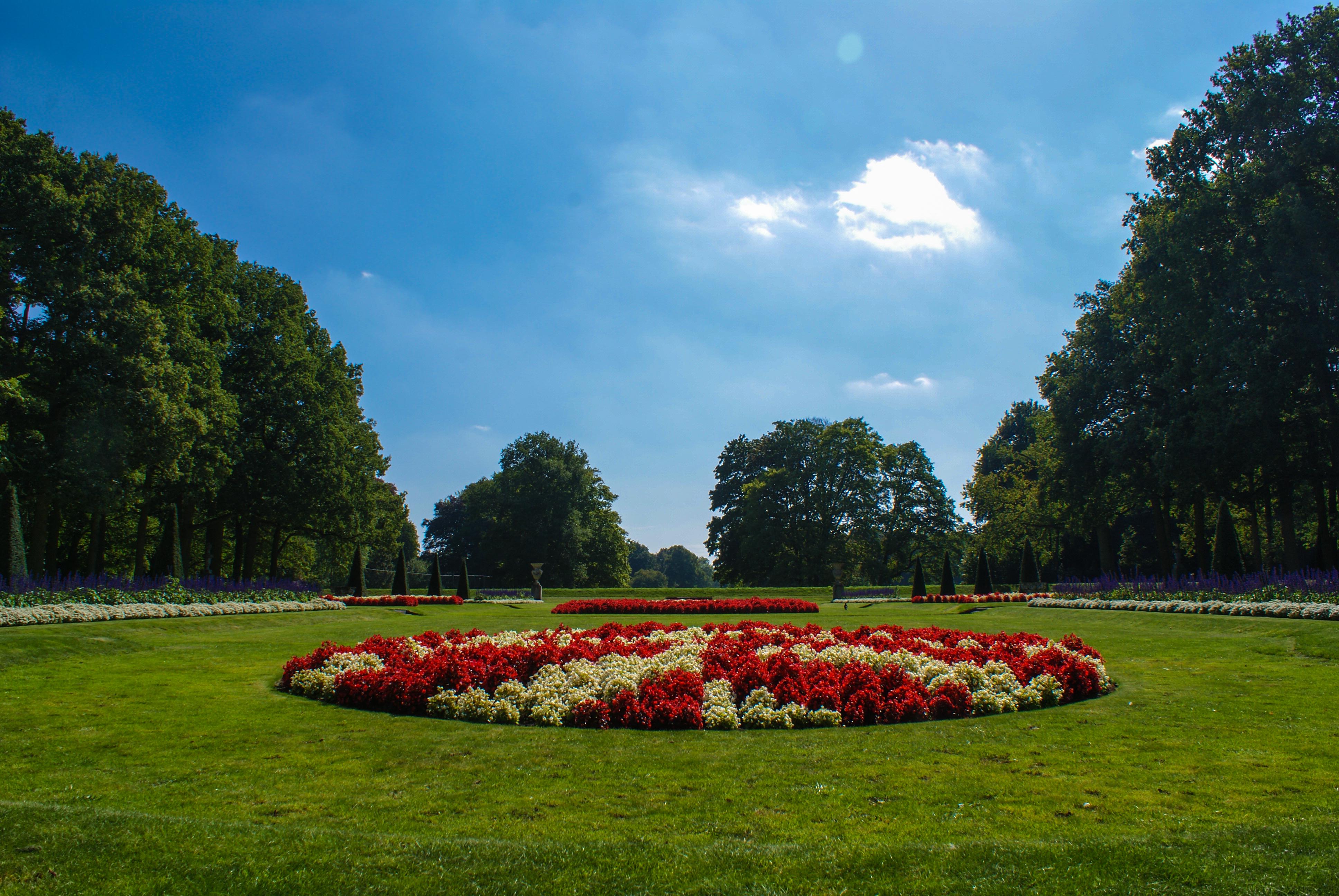 Franse tuinen voorbeelden tuin van versailles beroemd for Franse tuin