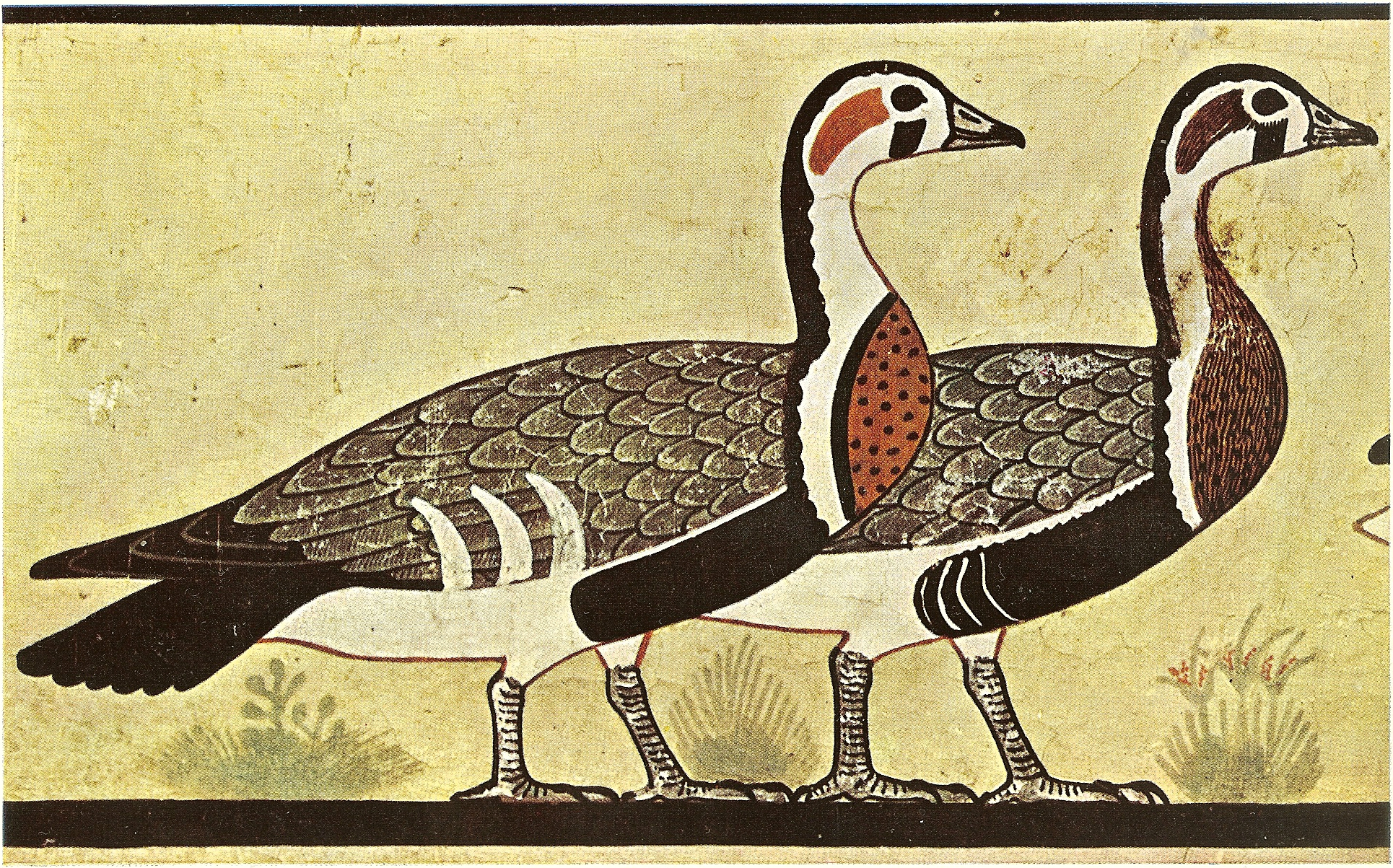 Meidum geese, from the mastaba of Nefermaat & Itet, approx. 2600BC