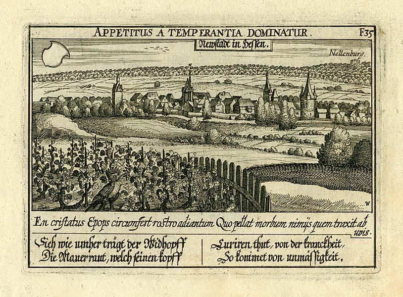 Meisner Newstadt in Hessen Appetitus a temperantia dominantur.jpg