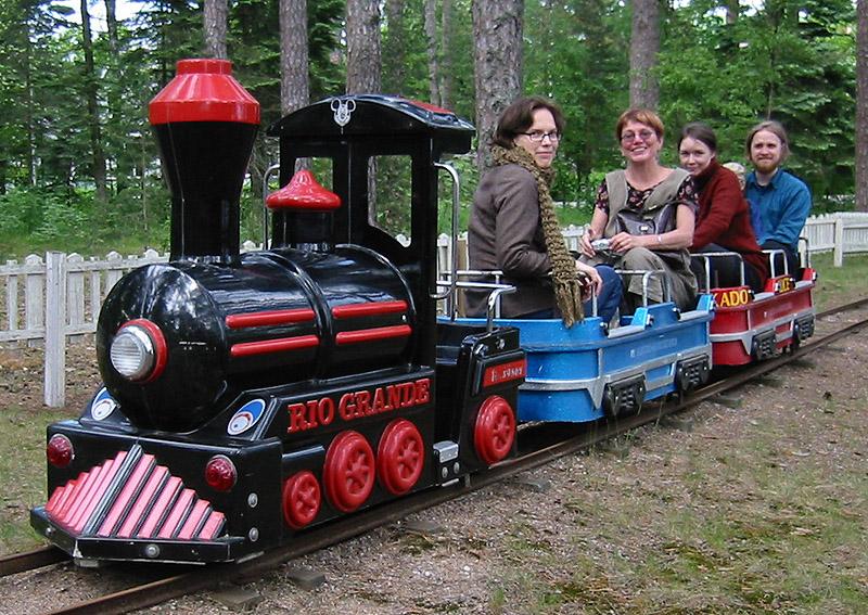 Mini train level 911