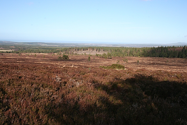 Moss of Findlayseat Looking down from a corner of the forest plantation on Hunt Hill towards Teindland Forest beyond the heather moor.