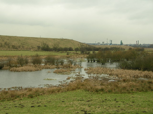 Newton Ings from Newton Farm - geograph.org.uk - 127172