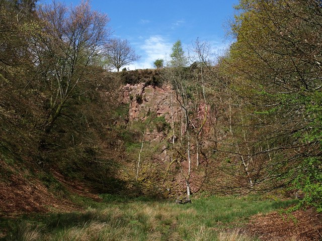 Old quarry, Triscombe Combe - geograph.org.uk - 1278941