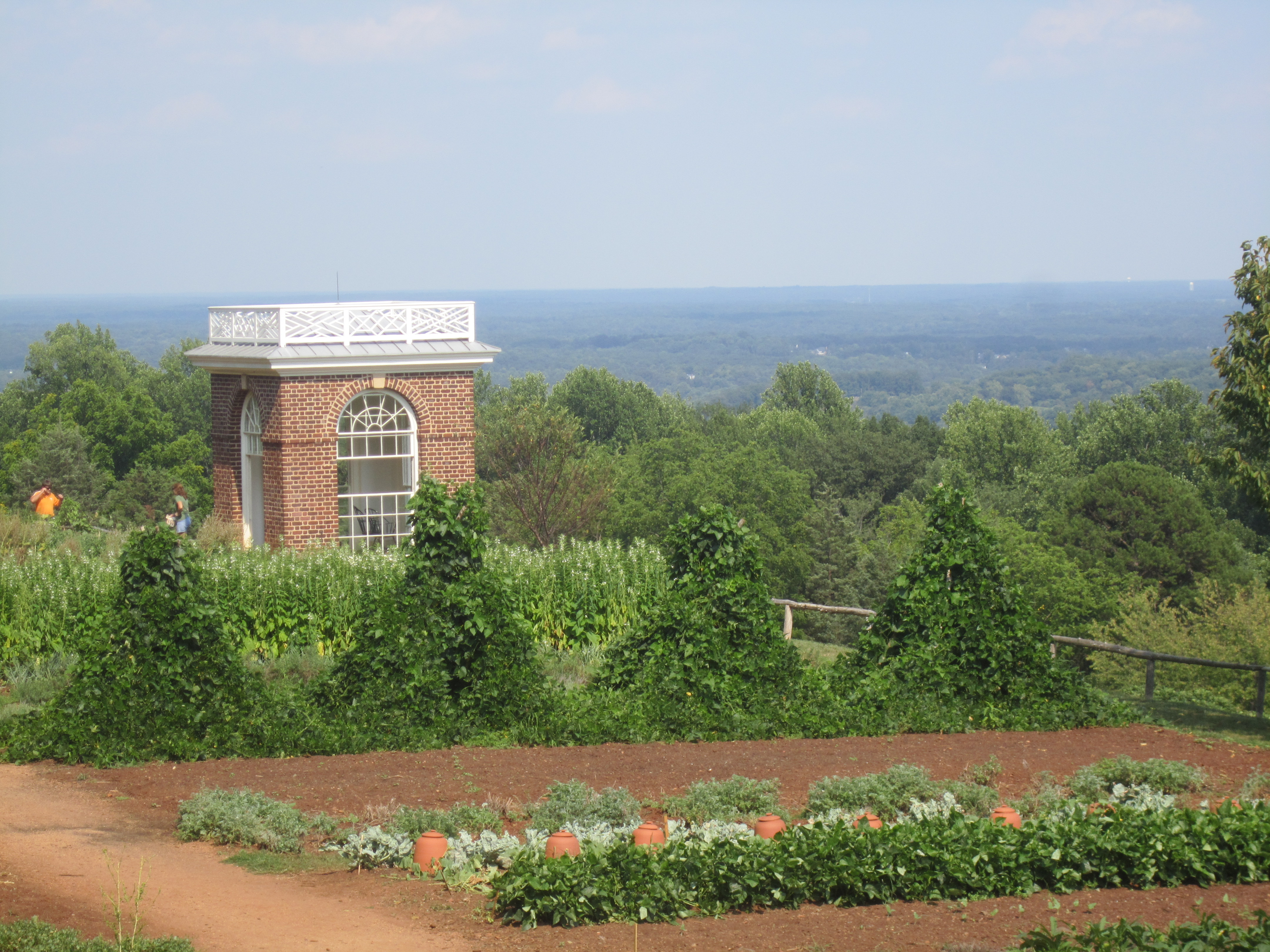 Thomas Jefferson's Legacy at UVa
