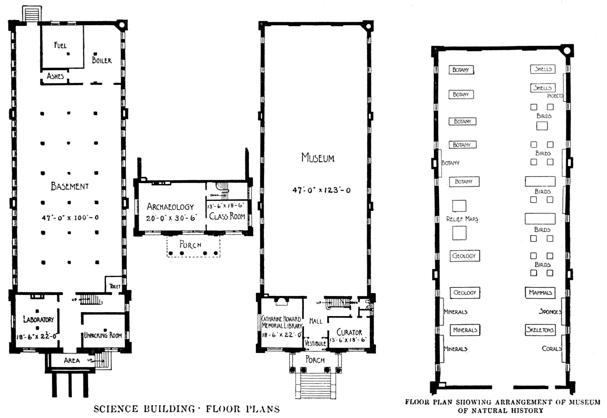 Wide Villa Plan