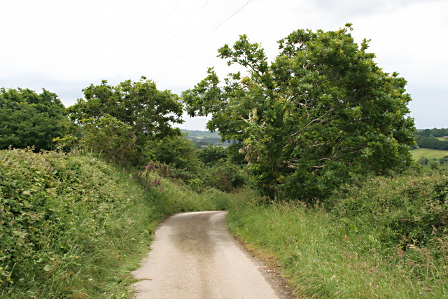 Road and Cycleway - geograph.org.uk - 845762
