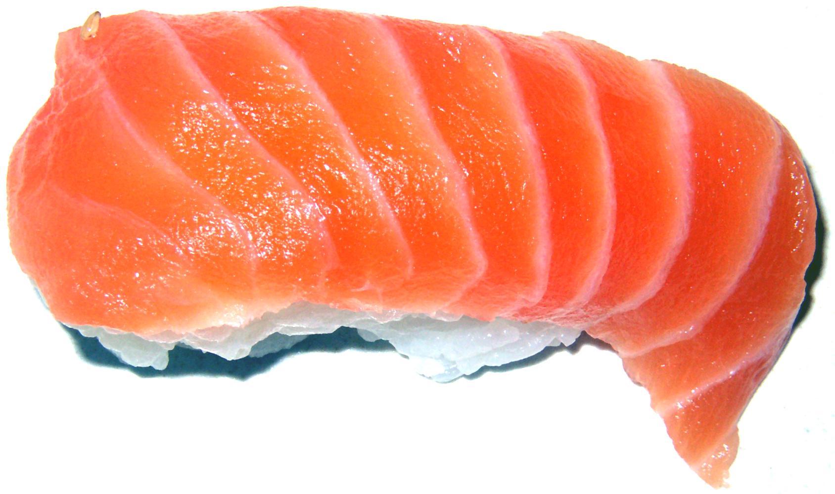 soubor salmon wikipedie