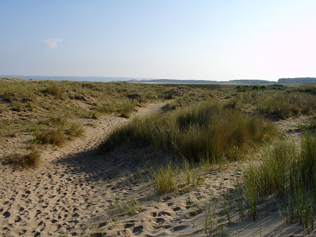 Sand dunes on Whiteford Sands beach - geograph.org.uk - 217018