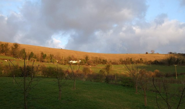 Selsley Common just before sunset - geograph.org.uk - 371950
