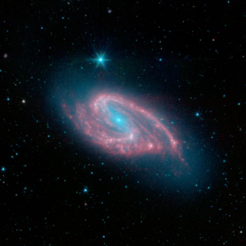 Messier 66 - Wikipedia