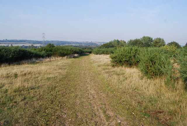 File:Track across the heath, East of Canterbury - geograph.org.uk - 984520.jpg