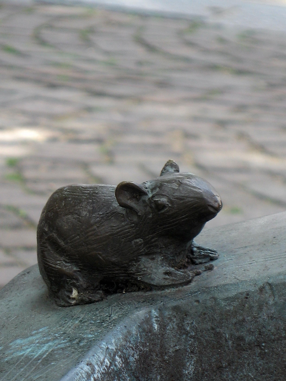 Filewerne Tasto Arm Wie Eine Kirchenmaus Img 8290jpg Wikimedia