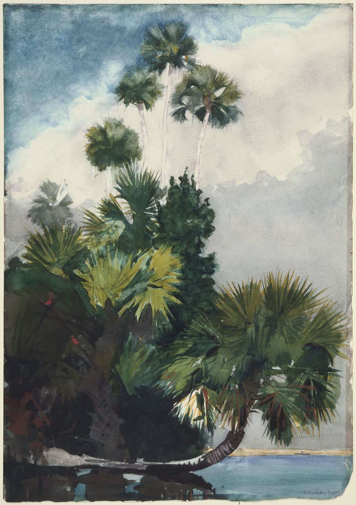 Watercolor artist magazine palm coast fl - The Former Homer S Watercolor Hurricane Bahamas 1898 Above Features A Row Of Wind Blown Palm Trees Under Churning Gray Skies
