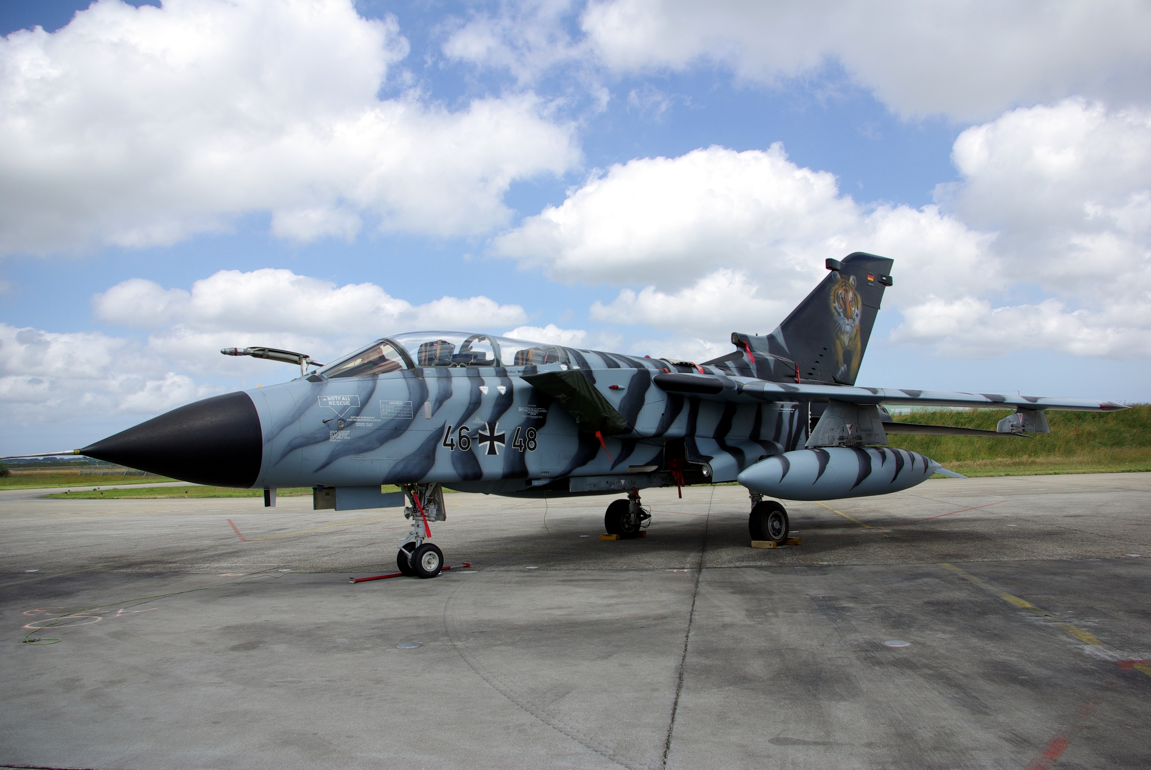 tornado tiger meet 2009 nissan