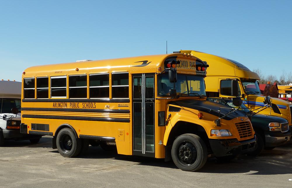 File:Arlington school bus.JPG - Wikipedia