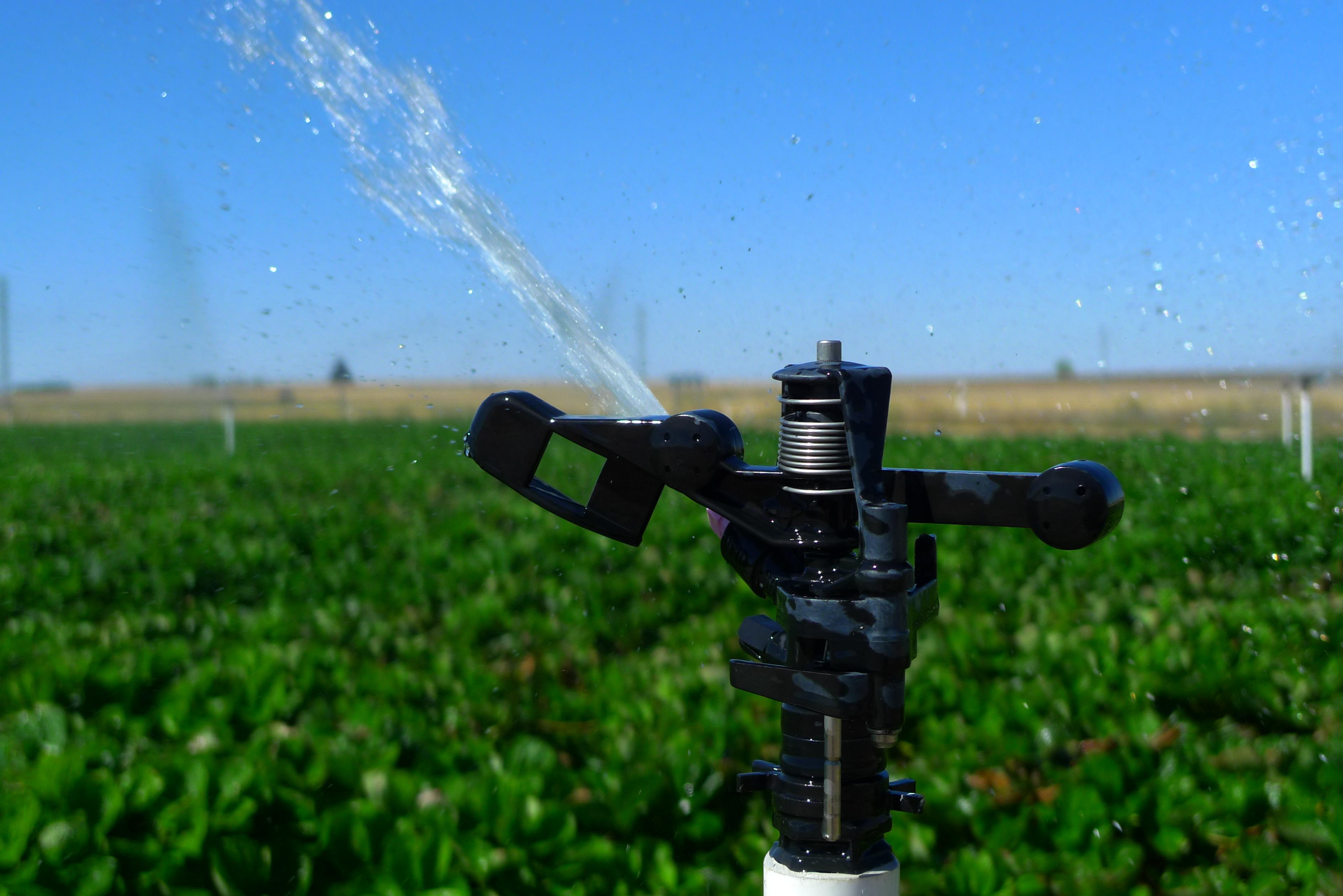 File aspersor jpg wikimedia commons - Aspersor de agua ...
