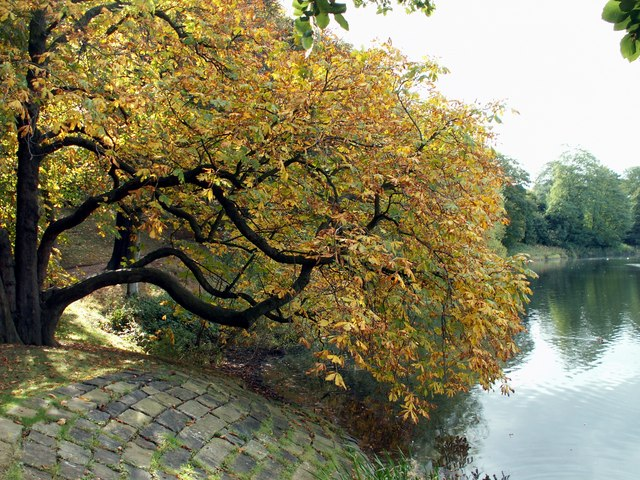 Autumn at Nostell Priory Middle Lake - geograph.org.uk - 1527312