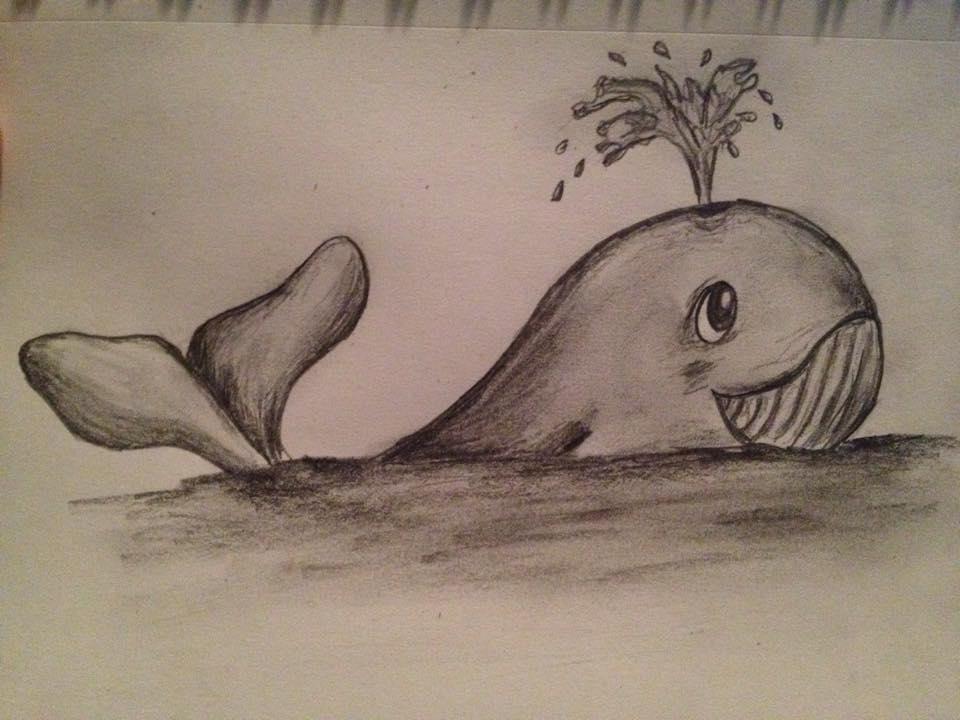 Fichier Baleine Dessin Jpg Wikipedia