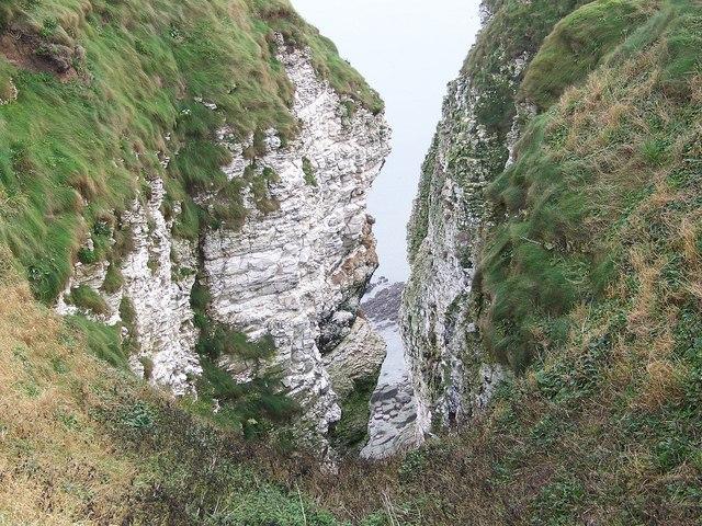 Bempton Cliffs - geograph.org.uk - 604672