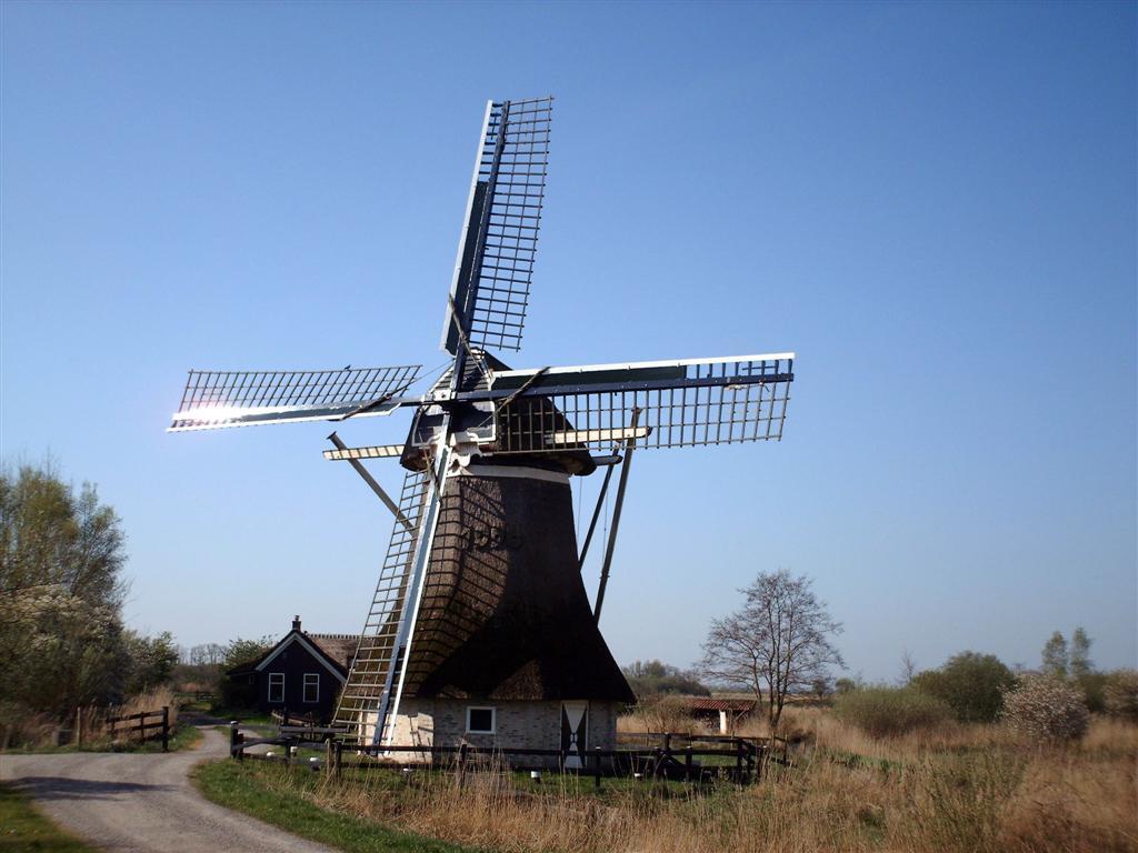 De Gooyer, Wolvega - Wikipedia