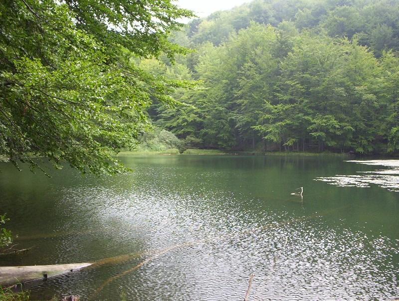 Duszatynskie jeziorka