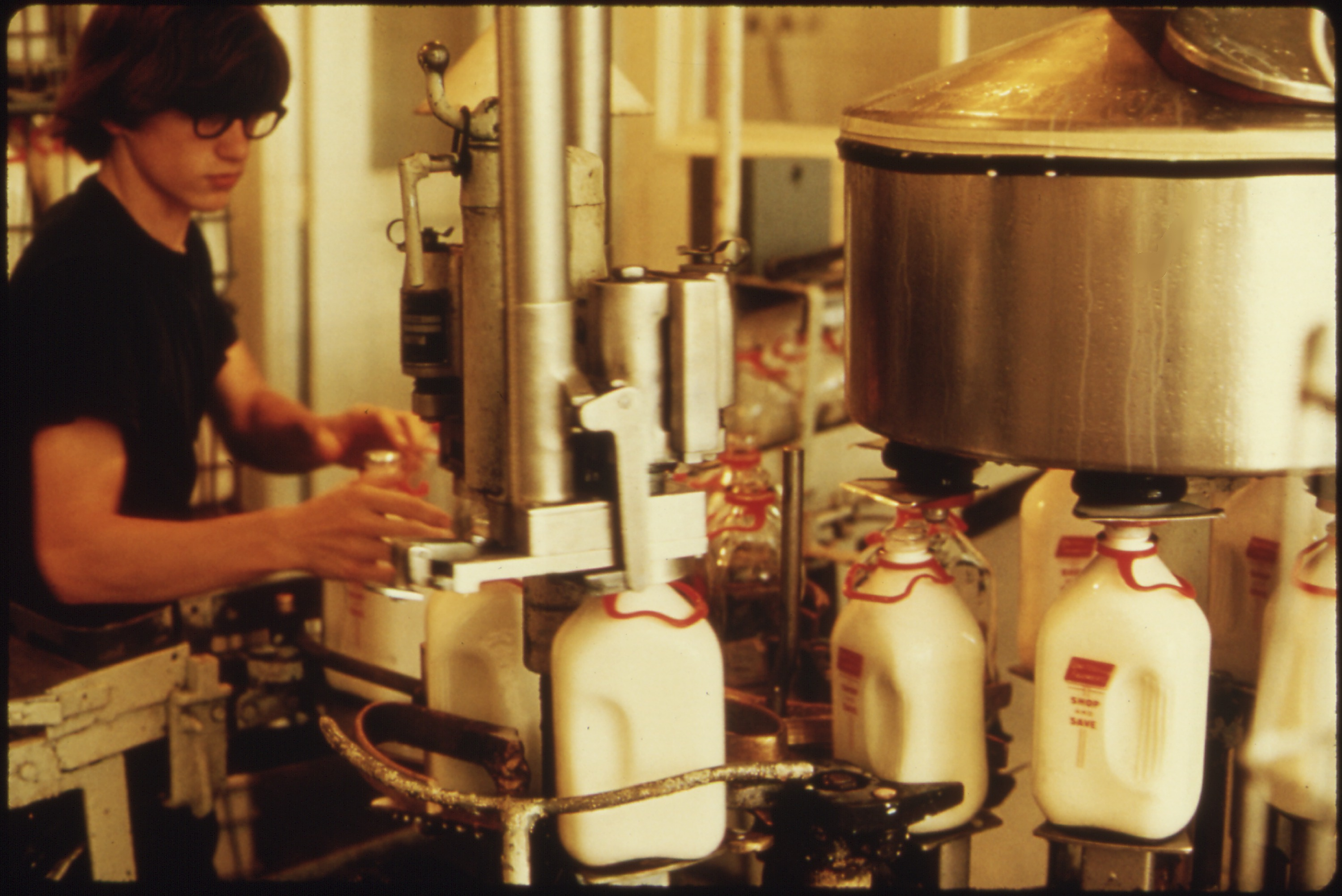 nature and scope of the dairy industries