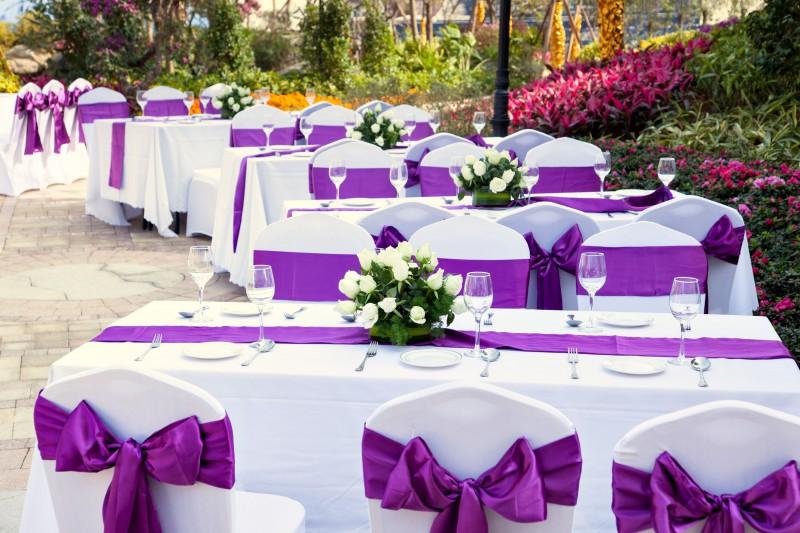 Decoration Violet Blanc Feerie