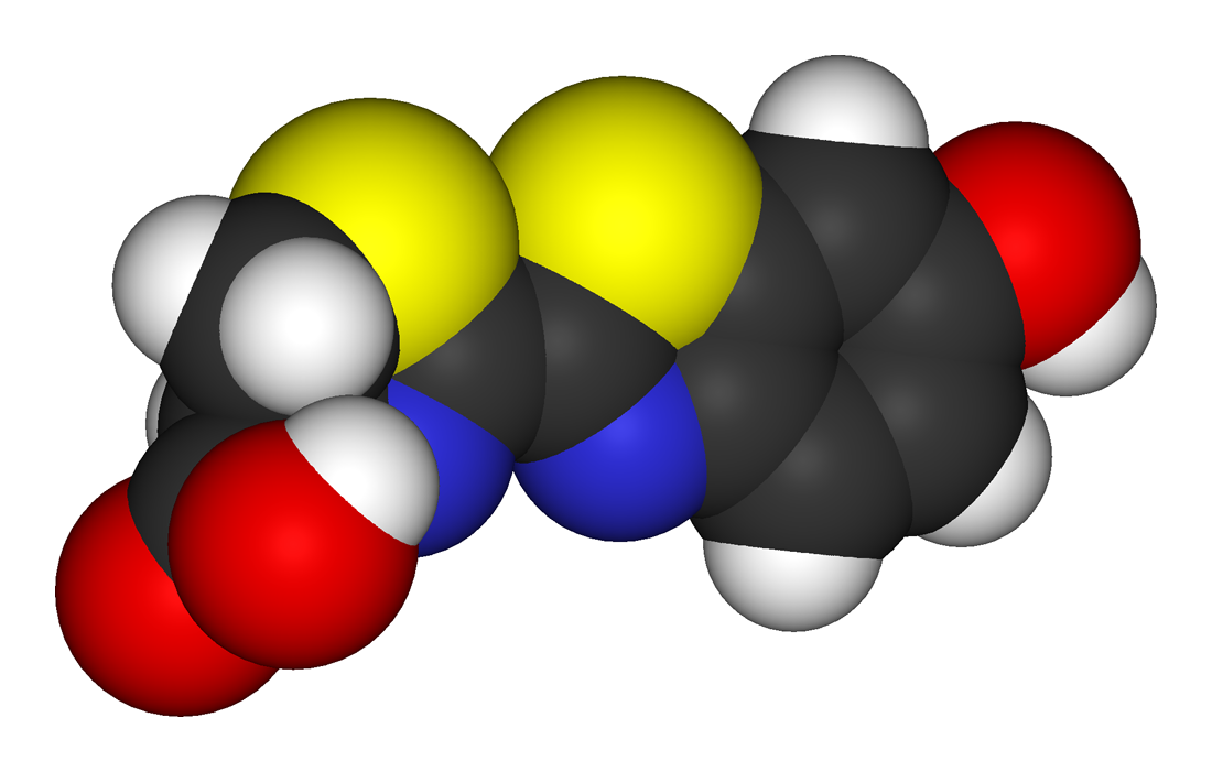 Luciferin - Wikipedia