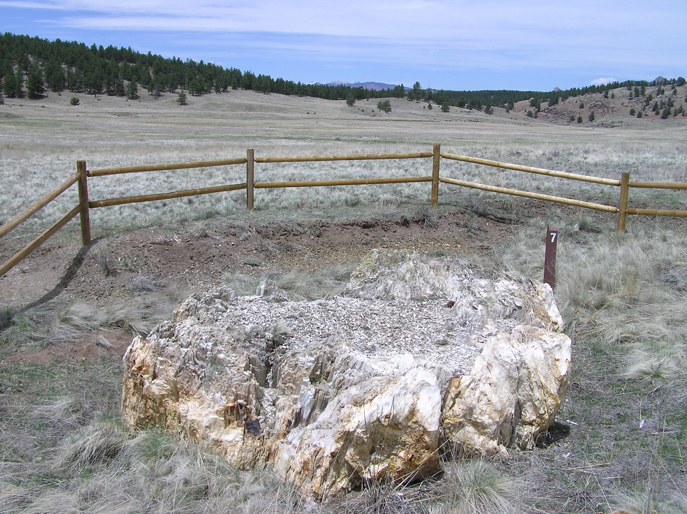 Florissant Fossil Beds National Monument PA272521.jpg English: Location Florissant Fossil Beds National Monument Beneath a grassy
