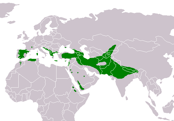 File:Gyps fulvus distribution map.png